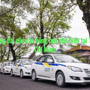 Số tổng đài của các hãng taxi phổ biến tại Tp Hồ Chí Minh